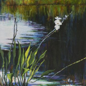 """River Lily, Myakka."" View more of Linda's work at <a href=""https://artistlindagreaves.com"">artistlindagreaves.com</a>."